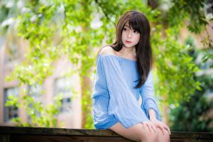 Bilder Asiatisches Unscharfer Hintergrund Brünette Blick Hand Sitzend junge Frauen