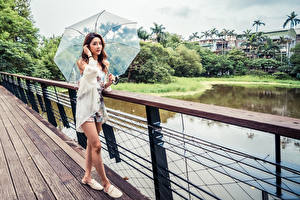 Images Asiatic Bridge Posing Brown haired Parasol Glance female