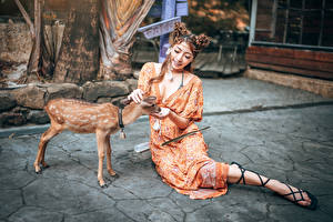 Pictures Asian Deer Cubs Sit Gown Smile Girls Animals