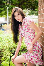 Pictures Asian Pose Dress Staring Brown haired Girls