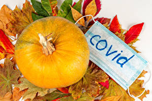 Wallpaper Autumn Coronavirus Pumpkin Masks Foliage Nature