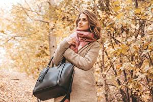 Bilder Herbst Handtasche Braunhaarige Mantel junge frau