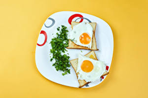 Wallpapers Bread Dill Colored background Plate Fried egg Two Food