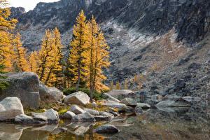 Image Canada Autumn Stone Cliff Trees Eastgate