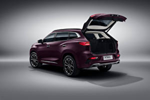 Pictures Chery CUV Metallic Chinese Opened door Exeed TXL, 2019 auto