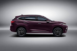 Image Chery Crossover Metallic Side Chinese Exeed TXL, 2019 automobile