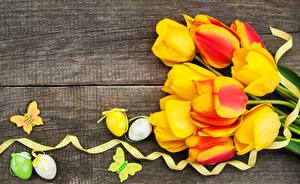 Image Easter Tulips Egg Wood planks Flowers