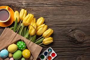 Bilder Ostern Tulpen Vorlage Grußkarte Blüte