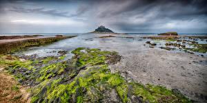 Images England Coast Island Cornwall, St Michael's Mount Nature