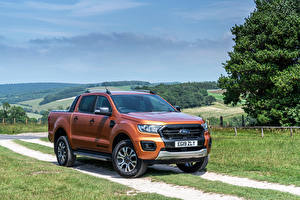 Hintergrundbilder Ford Pick-up Braune Metallisch Ranger Wildtrak UK-spec, 2019-- auto