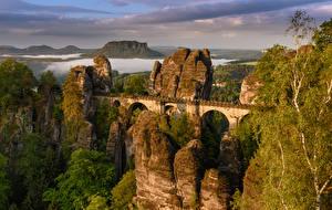 Обои Германия Мосты Скале Rathen Saxony Природа