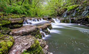 Image Germany Stones Forests Waterfalls Stream Black Forest Nature