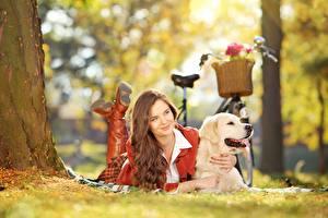 Bureaubladachtergronden Golden retriever Hond Fietsen Bruin haar vrouw Liggende Gras Onscherpe achtergrond jonge vrouw