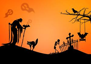 Fotos Halloween Hauskatze Fledermäuse Friedhof Ältere frauen