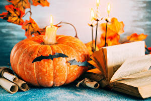 Wallpapers Halloween Pumpkin Candles Bird Books