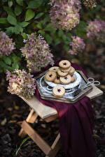 Wallpapers Hydrangea Cookies Food Flowers
