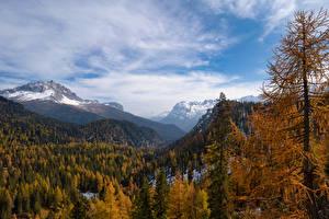 Papéis de parede Itália Montanhas Outono Alpes árvores Dolomites, South Tyrol Naturaleza imagens