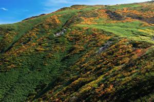 Fotos Japan Gebirge Mount Gassan Natur