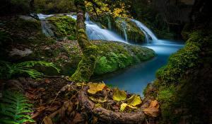 Картинки Испания Осень Камень Водопады Мох Листья