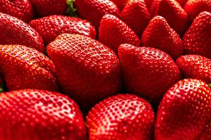Pictures Strawberry Closeup Food