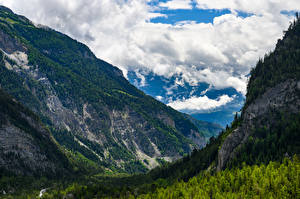 Pictures Switzerland Mountain Forest Clouds Valais Nature