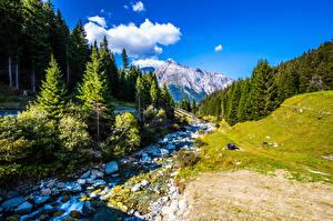 Фото Швейцария Гора Камень Альп Дерево Ручей
