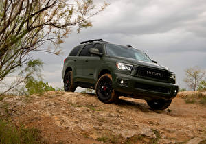 Photo Toyota Crossover Green 2020 Sequoia TRD Pro auto
