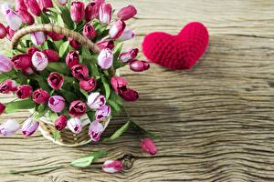Pictures Tulip Valentine's Day Heart Wicker basket Template greeting card Flowers