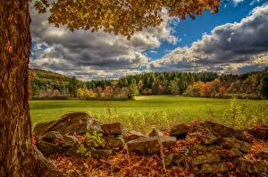 Bilder USA Herbst Steine Grünland Wälder HDR Norfolk, Virginia Natur