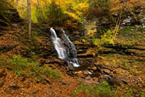 Обои для рабочего стола США Парки Осень Водопады Камень Ручей Листва Ricketts Glen Природа
