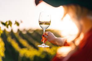 Pictures Wine Blurred background Stemware Hands