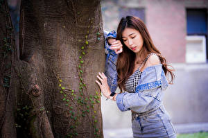 Pictures Asiatic Trunk tree Pose Jacket Brown haired young woman