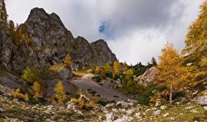 Fotos Herbst Slowenien Alpen Felsen Bäume Julian Alps