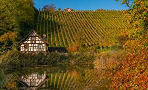 Wallpaper Autumn Switzerland Houses Pond Hill Bush Thurgau Nature