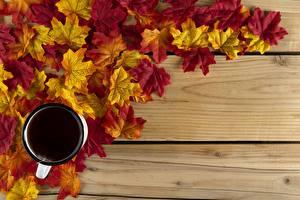 Bilder Herbst Tee Tasse Blattwerk Bretter Ahorn Vorlage Grußkarte Lebensmittel