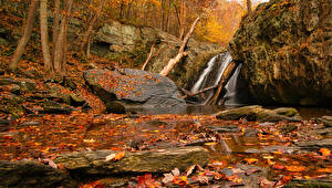 Wallpapers Autumn Waterfalls Stones Foliage Crag Nature pictures images