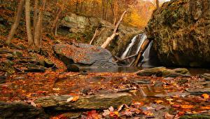 デスクトップの壁紙、、秋、滝、石、木の葉、岩、自然