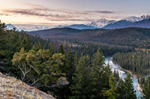 Wallpapers Canada Mountains Rivers Forests Scenery Jasper Park Alberta Nature pictures images