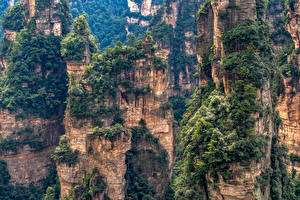 Picture China Parks Mountains Crag Trees Zhangjiajie National Forest Park Nature
