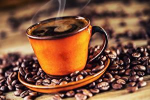 Fotos Kaffee Tasse Dampf Getreide