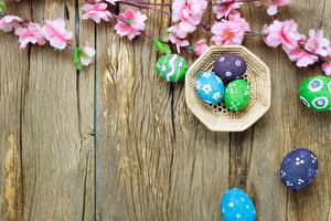 Picture Easter Eggs Boards