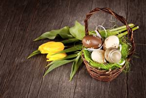 Wallpapers Easter Tulips Wicker basket Flowers pictures images
