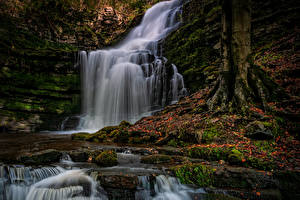 Hintergrundbilder England Herbst Wasserfall Felsen Blattwerk Laubmoose County Durham Natur