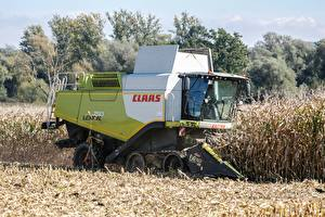 Image Fields Corn Combine harvester Working Claas lexion 760