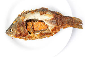 Photo Fish - Food Plate Fried