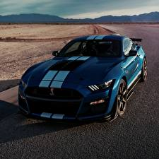 Fotos Ford Blau Strips Shelby GT500 2019 automobil