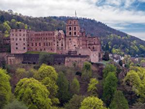 Picture Germany Castle Forests  Cities