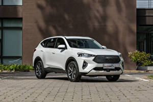 Pictures Haval White Metallic Crossover Chinese F7, 2020