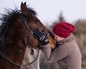 桌面壁纸,,馬匹,2 兩,親吻,手,手套,保暖帽,女孩,