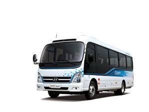 Sfondi desktop Hyundai Autobus Sfondo bianco County Electric, 2020 automobile